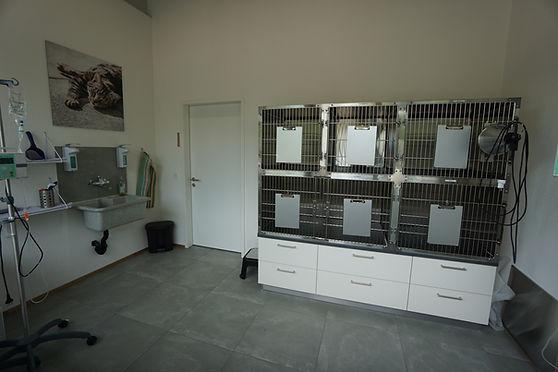 Separater Boxenraum für Katzen (Aufwachen nach Narkosen, stationärer Aufenthalt)...