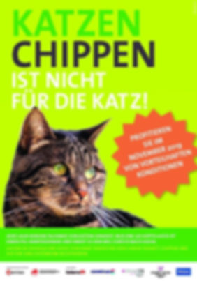 Katzenchip-Aktion 2019