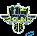 Dallas-Skyline-Logo.png