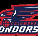 Columbus-Condors-_-Horizontal-Version-01