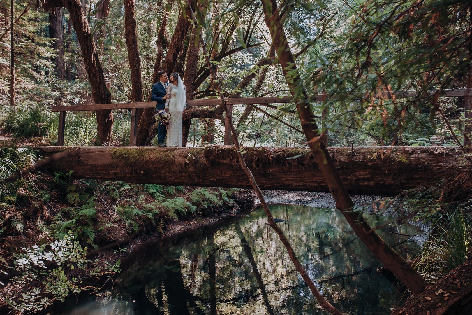 mendocino napa  wedding planner