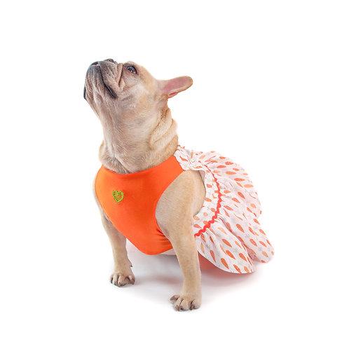 14 Carrot Dress