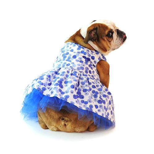 The Berry Sweet Dress