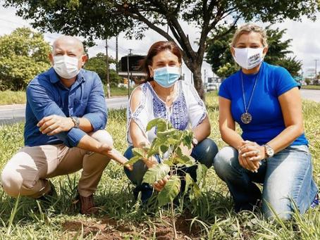 Primeiro plantio do Bosque da Memória Sandra Rufino