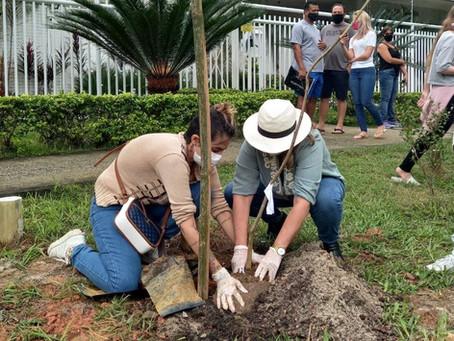 Famílias plantam árvores em homenagem às vítimas da Covid-19 no Rio