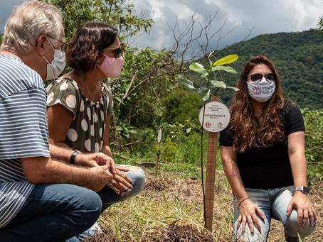 Campanha homenageia vítimas da COVID-19 através do plantio de árvores na Mata Atlântica