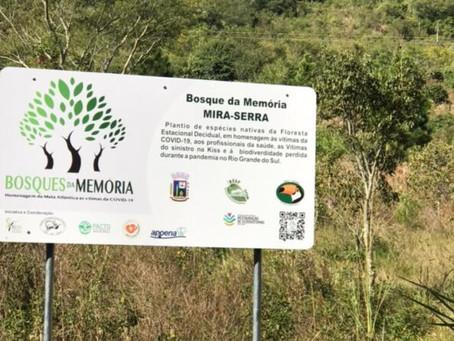 IVORÁ-RS FARÁ NOVO PLANTIO NO BOSQUE DA MEMÓRIA