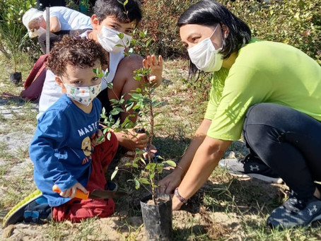 Mutirão de voluntários prepara Alameda Sandra Alvim para nova cerimônia dos Bosques da Memória