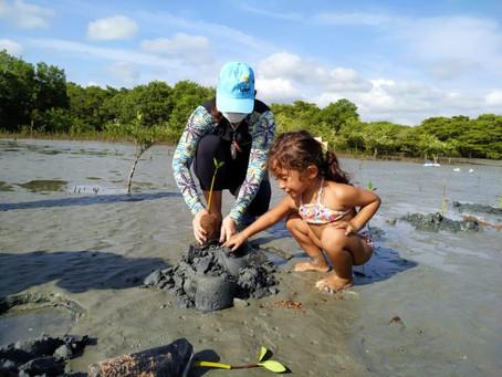 Mais uma ação de replantio de mangue, no Bosque da Memória Verde Vida