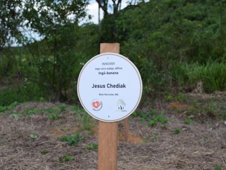 Bosque da Memória faz homenagem a jornalistas