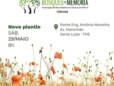 3º Plantio Bosque da Memória Rio Parnaíba