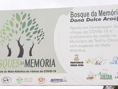"""Mais um plantio no """"Bosque da Memória Dona Dulce Araújo"""""""