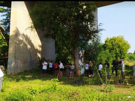 Voluntários plantam 100 mudas para homenagear vítimas da Covid-19 em Teresina