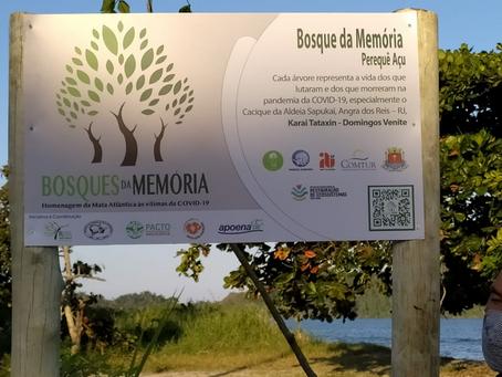 Bosque da Memória presta homenagem às vítimas da Covid-19 em Ubatuba