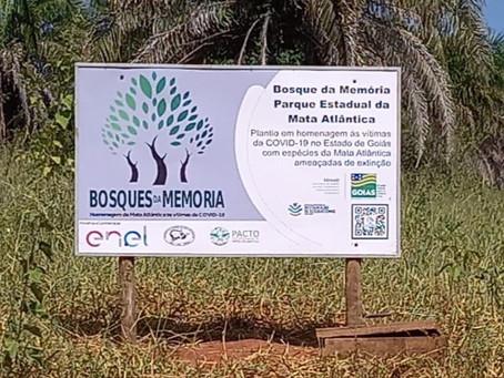 Projeto Bosques da Memória faz homenagem às vítimas da Covid-19 em Goiás