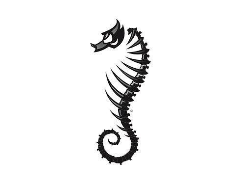Sea Horse Male