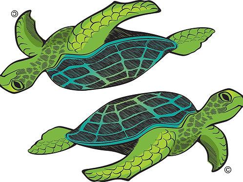 Turtle GRN2