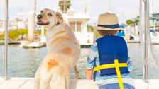Boating with Kids and Pets.