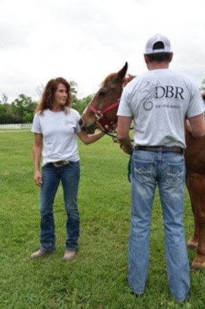 DBR Casual T-Shirts