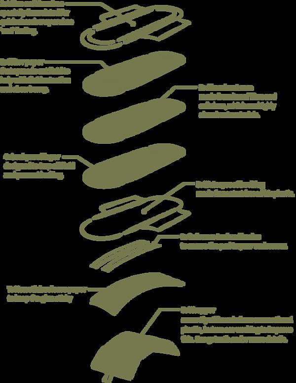 diagram of Ruth pad layers