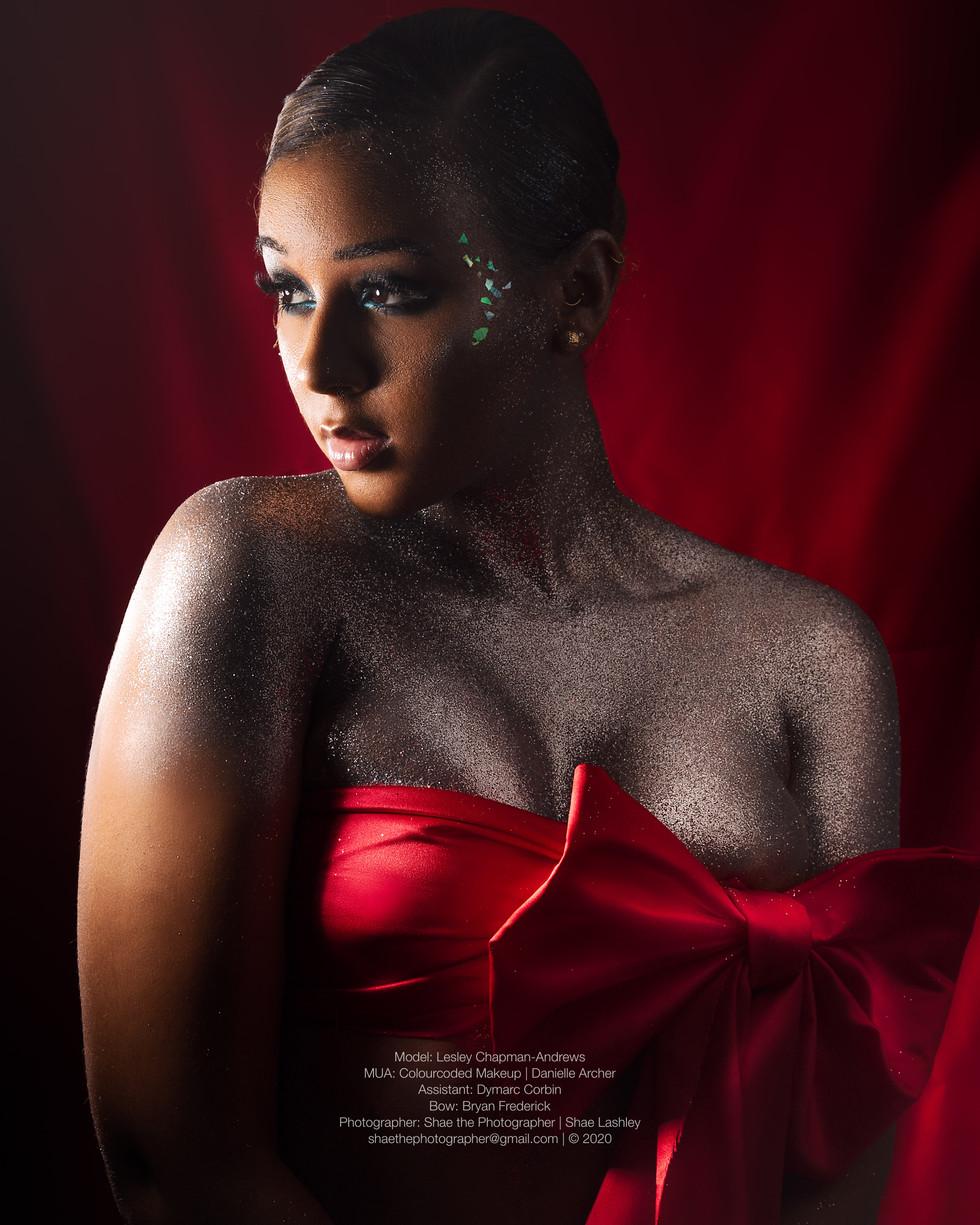 shaethephotographer_ChristmasSeries2020Story_HiRes-Lesley2-1.jpg