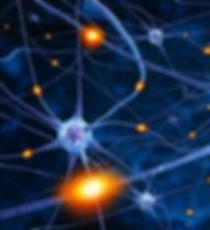 neuroscience-2017-7-881x495.jpg
