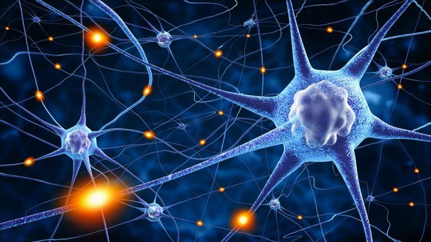 Neurohack