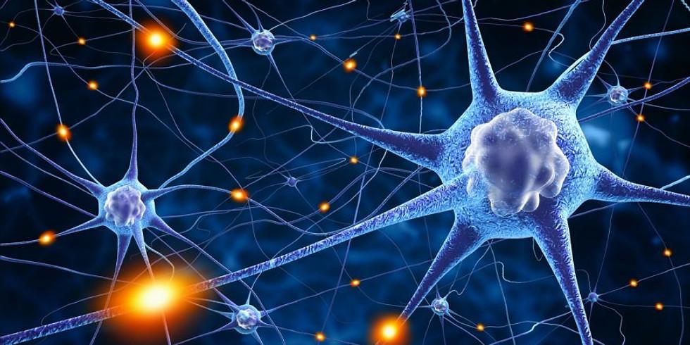 Omprogrammera din hjärna - och skapa en ny framtid