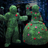 Living Topiary