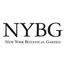 NYBG Logo Square.png