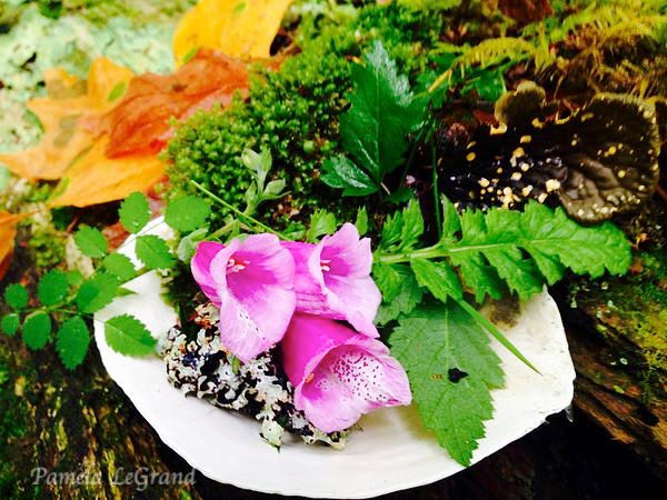 Fall Meets Spring By Malibu Artist Pamela LeGrand