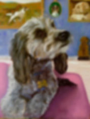 Malibu dog custom oil painting by Malibu Artist Pamela LeGrand