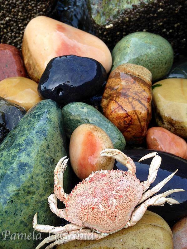 Twin Rocks By Malibu Artist Pamela LeGrand