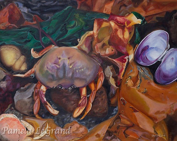 Crab And Kelp By Malibu Artist Pamela LeGrand