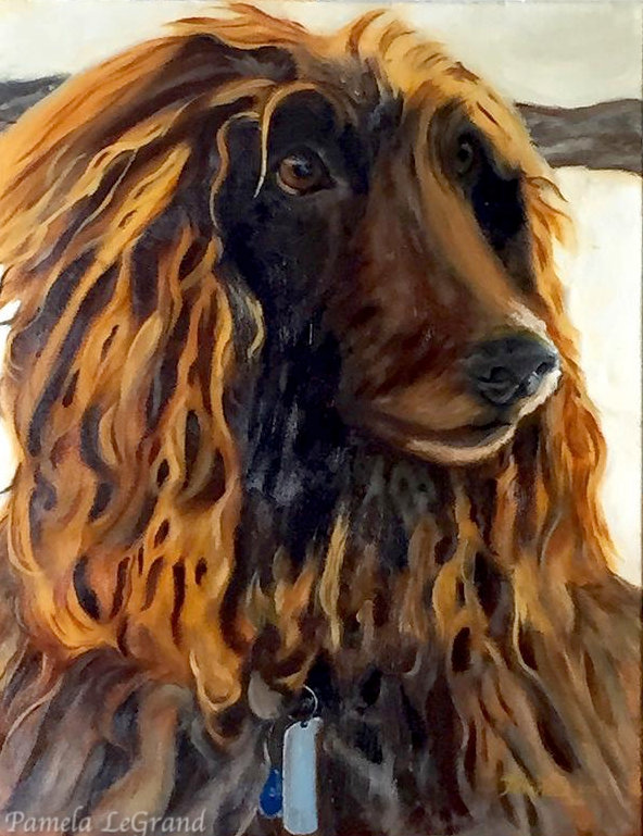 Lilly The Afgan Hound oil painting By Malibu Artist Pamela LeGrand.