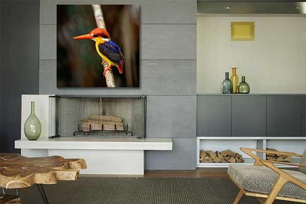 tableau-moderne-martin-pecheur.jpg