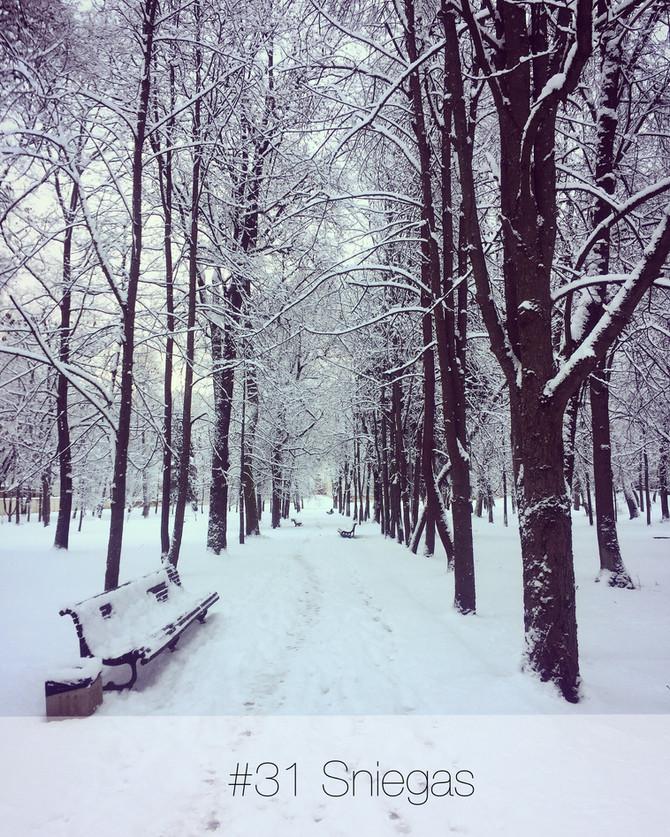 #365laimesdienos - 31. Sniegas