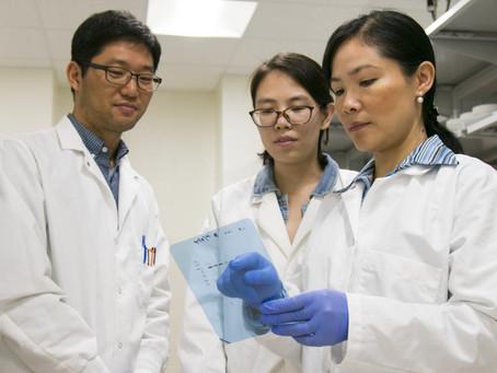 Zink stoppar cancertillväxt i ny cellstudie