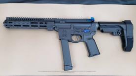 Spikes Tactical AR9 Build