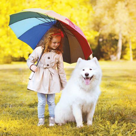 חורף עם כלבים- כל מה שמשפחה צריכה לדעת כדי להתנהל נכון עם כלבם בחורף