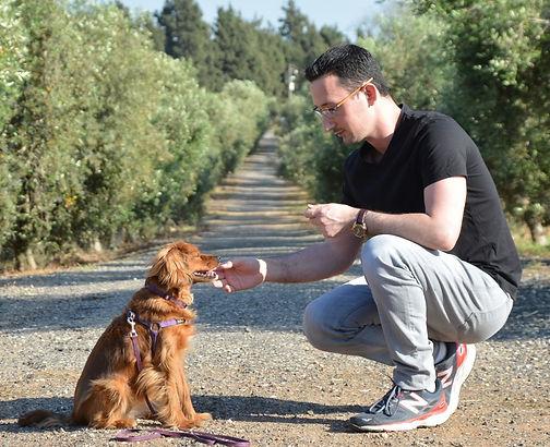 דן לרון מאלף כלבה