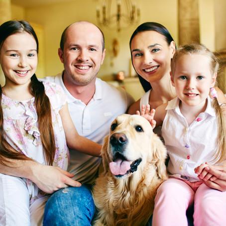 כלב חדש בבית- מה עושים?! - חלק 2