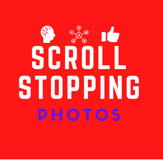 Scroll Stopping Photos | Sell More | Stand Out