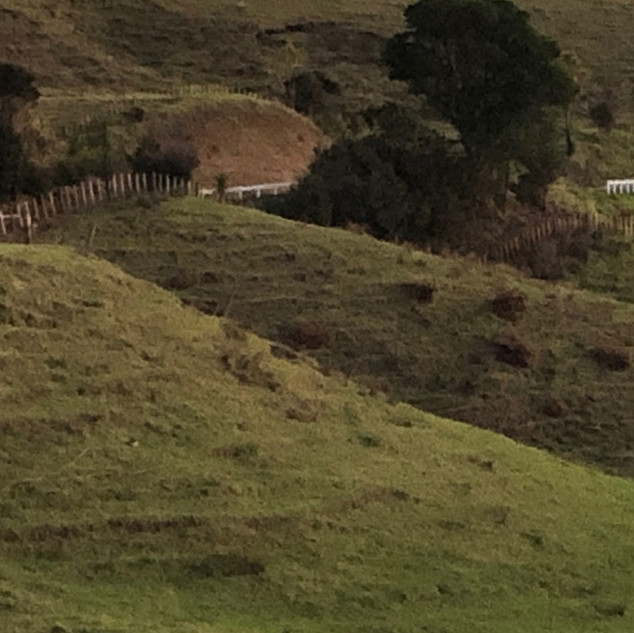 Takatu hillside 2.jpg