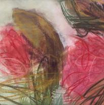 Hibiscus Mutabilis_