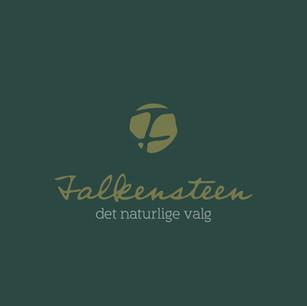 Falkensteen logo
