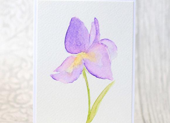 Original Iris Card