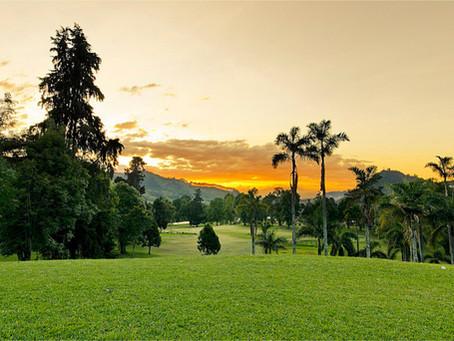 Colombia apuesta por sus bosques, territorios de vida y futuro