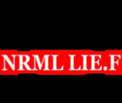nl logo(1).png
