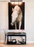 Horse Entry.JPG